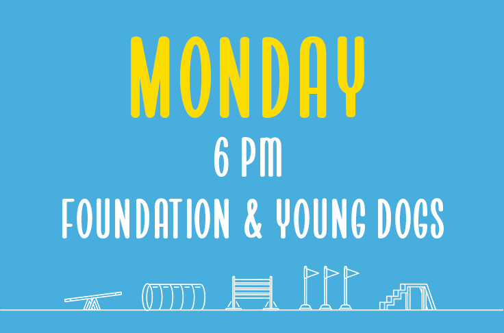 Monday<br> 6pm<br> Foundation & Young Dogs <br> Nicola Wildman