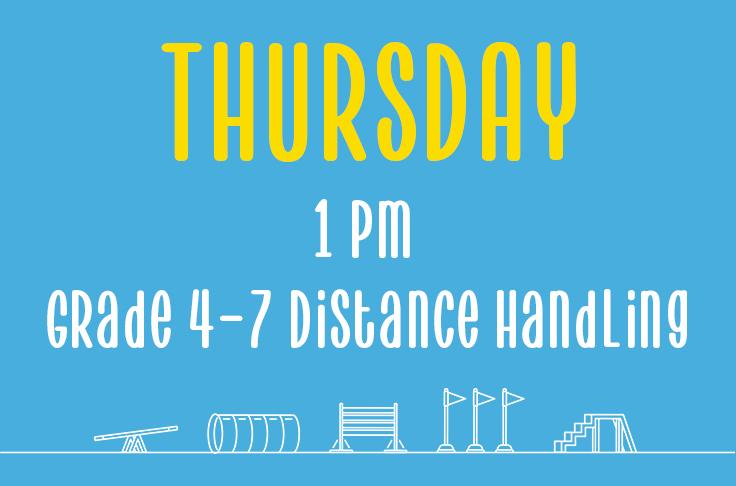 Thursday <br>1pm <br>Grades 4-7 Distance Handling<br> Nicola Wildman