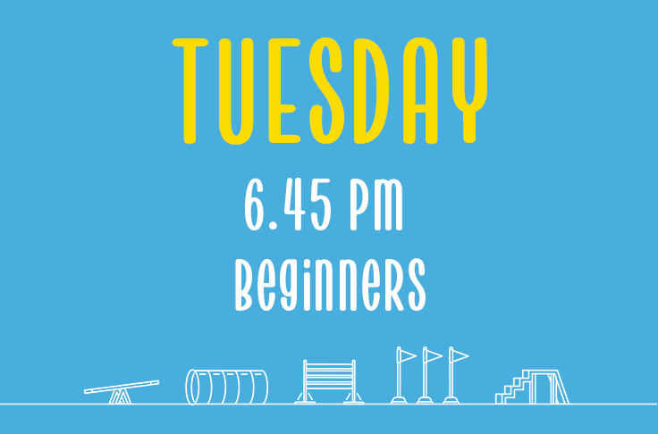 Read more about the article Tuesday<br> 6.45pm<br> Beginners <br> Laura
