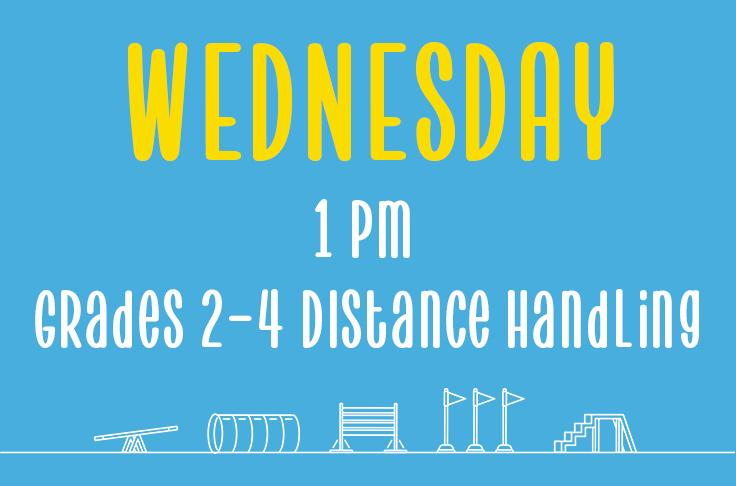 Wednesday <br>1pm <br>Grade 2-4 distance handling<br> Nicola Wildman – Barton