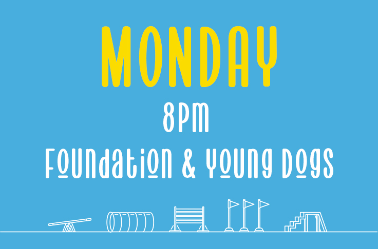 Monday <br> 8pm – 9pm <br> Young Dogs and Foundations<br> Nicola Wildman – Hydropaws