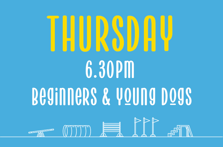 Thursday<br> 6.30pm – 7.30pm <br>Beginners and Young Dogs<br>Rebecca Willicombe – Hydropaws
