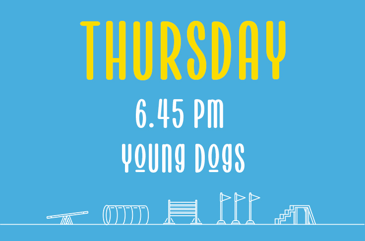 Read more about the article Thursday<br> 6.45pm<br> Young Dogs <br> Becky Willicombe